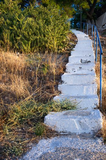 Rural stairway tray  in natural park by cactus bush