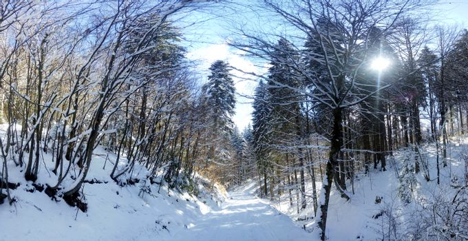 Panoramic view of a mountain roud on winter