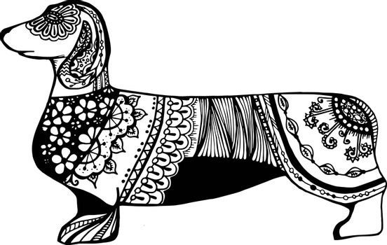 Black dachshund of lace and ornament on a white background