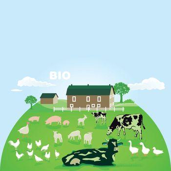 Organic farm with pasture