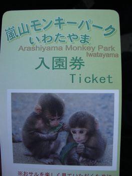 ticket for monkey park sweet monkey babies
