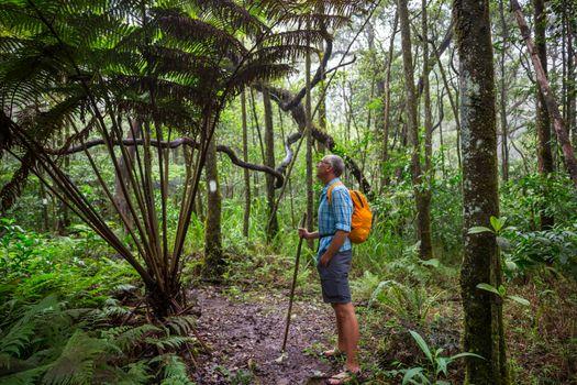 Hike in jungle