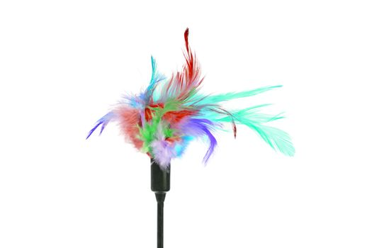 Feathered pole cat toy