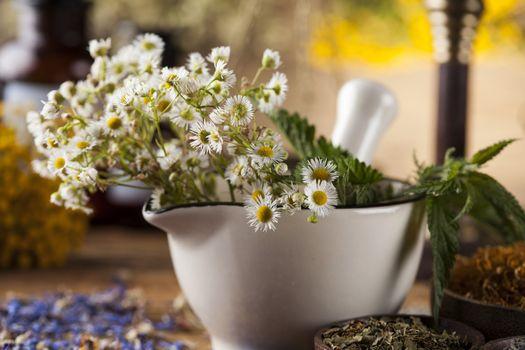 Mortar, Alternative medicine and Natural remedy