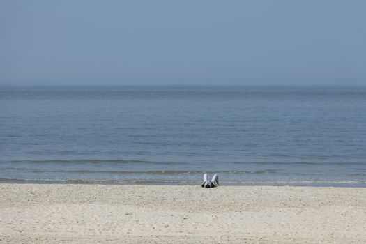 A single person who is sunbathing on the beach with the sea in the background