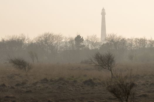 Abstract photo of the lighthouse of the island Ameland in the evening sun with a nature reserve on the foreground
