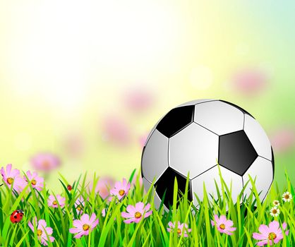 Soccer ball on a background of grass and flowers. Soccer ball on an abstract background.