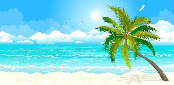 Landscape of the tropical shore. The landscape of the sea shore with palm tree. Sea shore with palm tree, sky and sun. Palm tree against the sky, the sea and the sun.