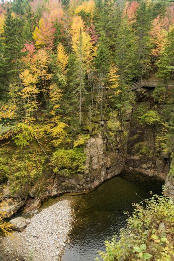 Foliage in the fall time in Franconia Notch State Park, New Hampshire, USA