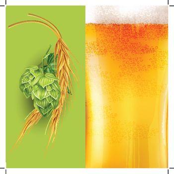 Hops, malt and beer. Vector illustration