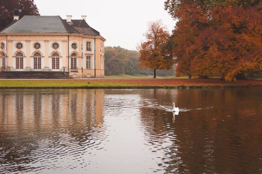 Bavarian Castle Nymphenburg Park, autumn landscape with a lake and a white swan