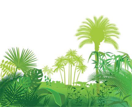 Tropical exotic plants illustration