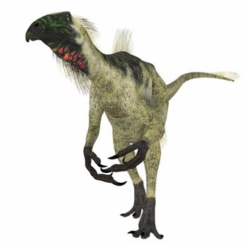 Beipiaosaurus was a herbivorous theropod dinosaur that lived in China in the Cretaceous Period.