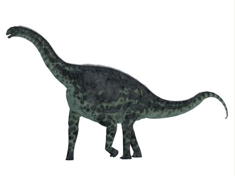 Cetiosaurus was a herbivorous sauropod dinosaur that lived in Morocco, Africa in the Jurassic Period.