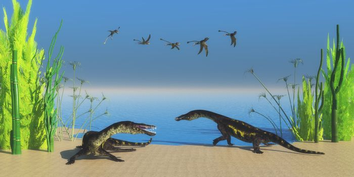 A flock of Peteinosaurus flying reptiles watch as two Nothosaurus dinosaurs growl at each other on a Triassic beach.