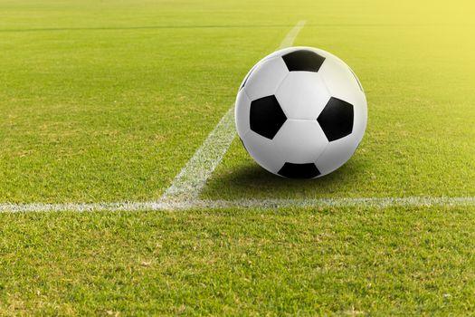 Soccer ball on the football field