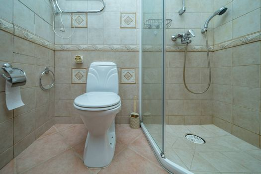 Toilet bowl in small bathroom with shower Room with brown tile decoration