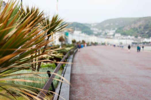 Palm leaves in foreground focus with blurred background. Blurred road with people walking. Abstract photo with blurred people and objects. Blurred mountains in the background.