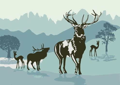 Deers in the mountains