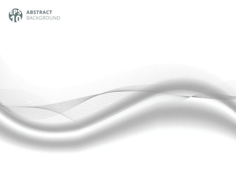 Abstract gray color line wave element with white silk satin background for design. Vector illustration