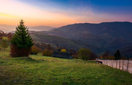wooden fence on a grassy rural hillside at autumn dawn. horese, woodshed and spruce in the scene. gorgeous landscape in forested mountains with red foliage