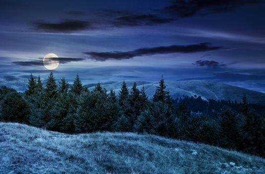 summer landscape with forested hills at night in full moon light. beautiful scenery of Svydovets mountain ridge, Ukraine