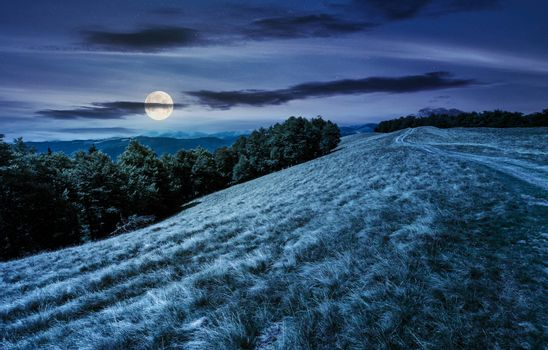 mountain road in to the beech forest at night in full moon light. Svydovets mountain ridge in the distance. stunning landscape of Carpathian mountains, Ukraine