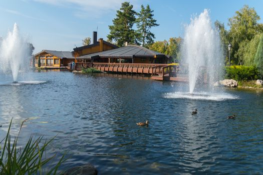 Wonderful view of the lake with high fountains and waterfowl ducks