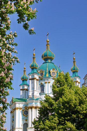 turquoise domes with a golden edging of the St. Andrew's Church with a flowering chestnut in the foreground