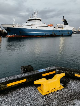 The harbor of Reykjavik