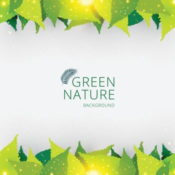 Template header or footer green leaves nature concept background