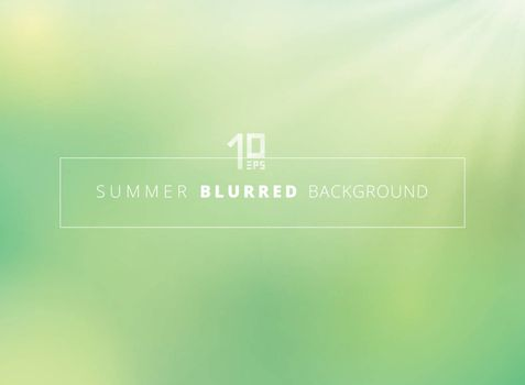 Summer time green nature blurred background with sunlight shine. Vector illustratio