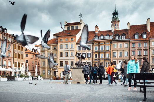 Flying pigeons on the old square of Warsaw, the suburb of Krakow
