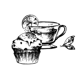 Hand Drawn Sketch of Tea Cup and Delicious Cupcake. Vintage Sketch. Great for Banner, Poster