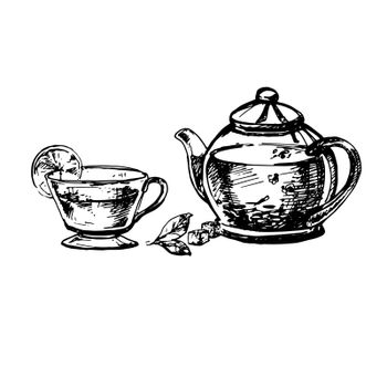 Hand Drawn Sketch of Teacup and Teapot. Vintage Sketch. Great for Banner, Label, Poster