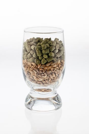 Glass With Malt And Hop