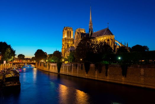 Night over Notre Dame