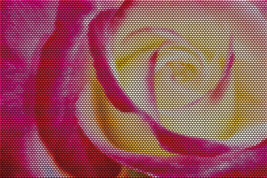Yellow and Red Rose Dotted Vector Illustration