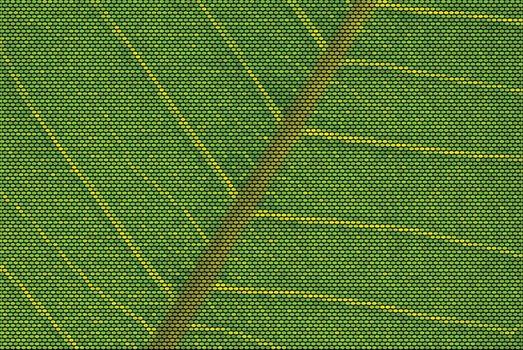 Leaf Veins Dotted Vector Illustration