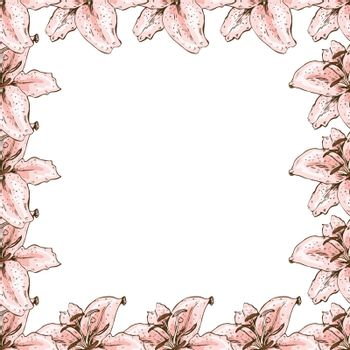 A beautiful floral frame of pink lilies. Flower design for cards, banners, posters and so on. Botanical vector illustration
