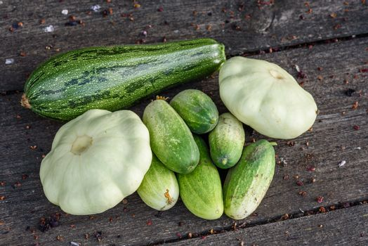 Zucchini, pattypan squash, cucumbers harvested from garden beds