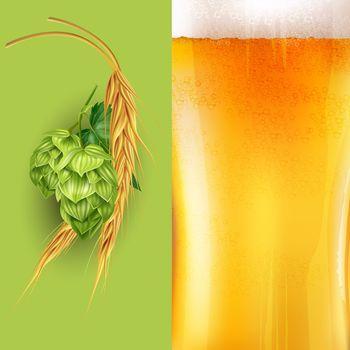Hops, malt and beer illustration