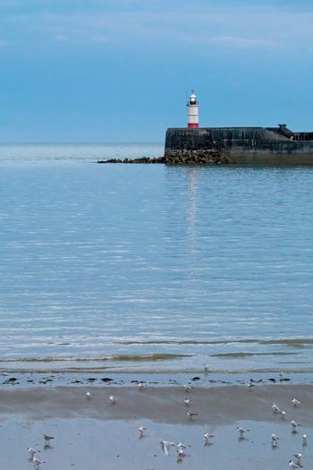Newhaven Lighthouse at Low Tide