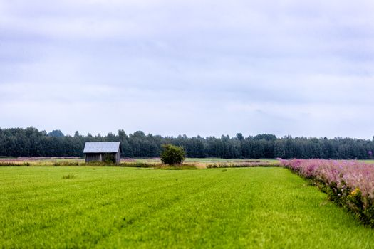 Barn in Farmfield with trees in the background.