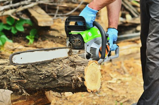 man saws a log with a chainsaw turned on