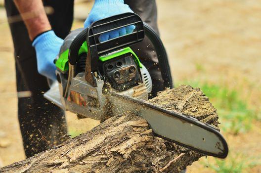 A man saws a log with a big chainsaw