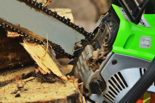 Chainsaw saws a log close up, large bars