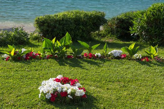 Lush flowerbeds in the summer garden. A bright sunny day. in the background the sea.