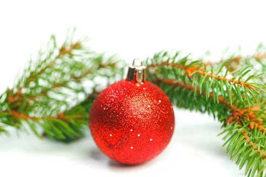 Bauble and fir branch