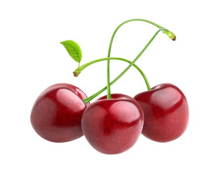 Cherries isolated on white background with clipping path